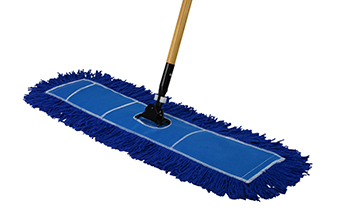This is a picture of a mop